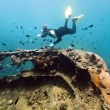 Shipwreck and diver — Stock Photo