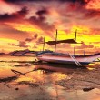 Stock Photo: Boat at sunset