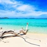 Tropical beach Malcapuya — Stock Photo #5703640