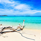 Tropical beach Malcapuya — Stock Photo