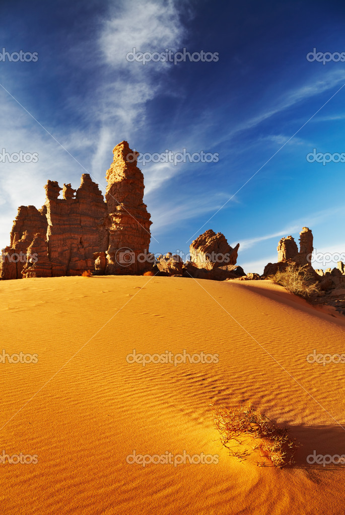 Bizarre sandstone cliffs in Sahara Desert, Tassili N'Ajjer, Algeria  Stock Photo #5479193