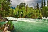 Berg rivier kucherla — Stockfoto
