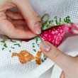 Cross-stitching — Stock Photo #5568526