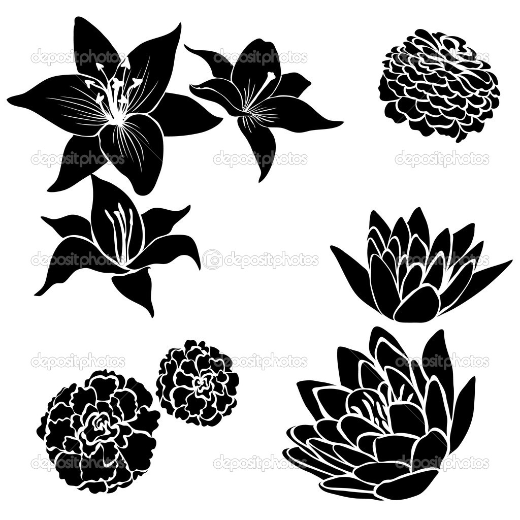 Set Of Black Flower Design Elements Vector Illustration: Set Of Black Flower Design Elements