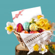 Basket full of Easter eggs and flower — Lizenzfreies Foto