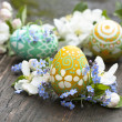 Easter eggs and flower — Foto Stock