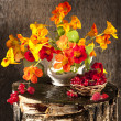 Bouquet of flowers — Stockfoto
