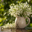 Stock Photo: Bouquet Lily of the valley