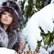 Beauty woman in the winter scenery — Stock Photo #6316564