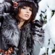 Beauty woman in the winter scenery — Stock Photo #6316696