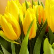 Yellow tulips — Stock Photo #6581343