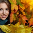 Beautiful young woman in autumn park. Shallow DOF. — Stock Photo