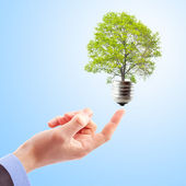 Concept of renewable energy — Stock Photo