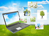 Laptop against green nature background — Stock Photo