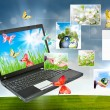 Collage of laptop against green nature — Stock Photo