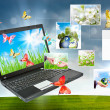 Stock Photo: Collage of laptop against green nature