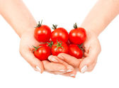 Tomatoes cherry in female hands — Stock Photo