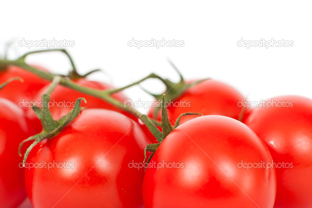 Red tomatoes on a white background — Stock Photo #5910379