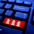 Christmas tree on Computer Key — Stock Photo #6142454