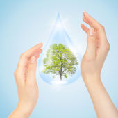 Drop of water with Tree inside and hands — Foto Stock