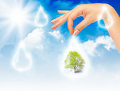 Symbol of environmental protection — Stock Photo