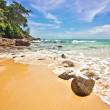 On the sand tropical beach. - Stock Photo