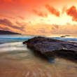 Tropical colorful sunset. - 图库照片