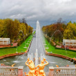 Grand cascade fontane peterhof Palace — Foto Stock #6295883