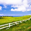 Landscape of Big Island. Hawaii — Stock Photo