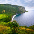View on the ocean on Big island. Hawaii — Stockfoto