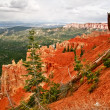 View from viewpoint of Bryce Canyon. Utah. USA — 图库照片