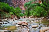 River in Zion Canyon — Stock fotografie