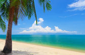 Panoramic tropical beach — Stock Photo