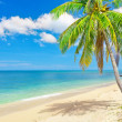 Panoramic tropical beach — Stock fotografie