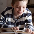 Boy reeding book - Stock Photo