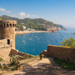 Tossa de Mar. Costa Brava, Spain — Stock Photo #6599468