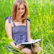 Portrait of girl reading book - Stock Photo