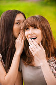 Two young speaking women — Stock Photo