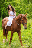 Young beautiful woman rides a horse — Stock Photo
