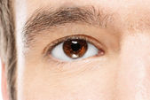 Man's brown eye — Stockfoto