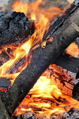 Closeup de fogo — Fotografia Stock