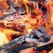 Fire closeup — Stock Photo #6689516