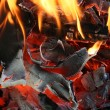 Fire closeup — Stock Photo #6689536