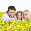 In the blossoming field — Stock Photo