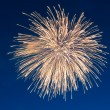 Firework on blue sky — Stock Photo