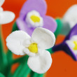 Close-up of plasticine flowers — Stock Photo