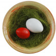 Two eggs in a plate with green grass — Lizenzfreies Foto