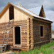 Small unfinished wooden timber home — Stock Photo