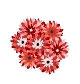 Ilustração de um monte de aster flores — Vetorial Stock