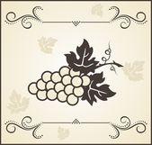 Retro Kupferstich von grapevine — Stockvektor